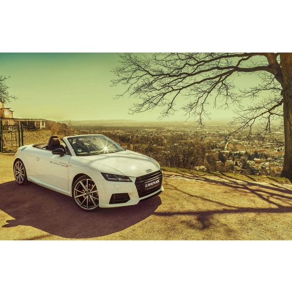 Audi TT Panorama