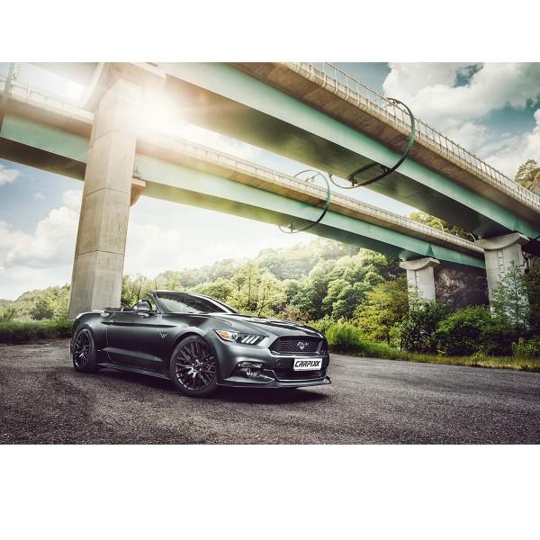 Ford Mustang Landschaft