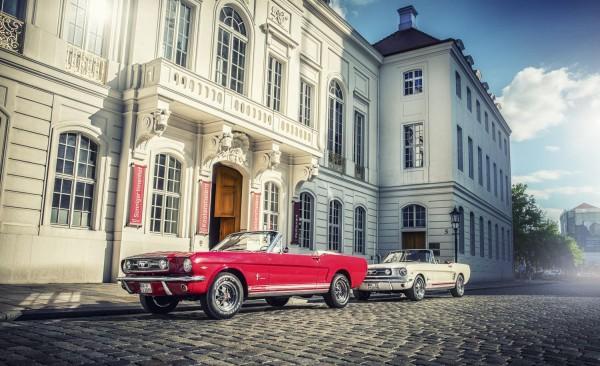 Wandbild 1966 Ford Mustang vor Kurländer Palais Dresden