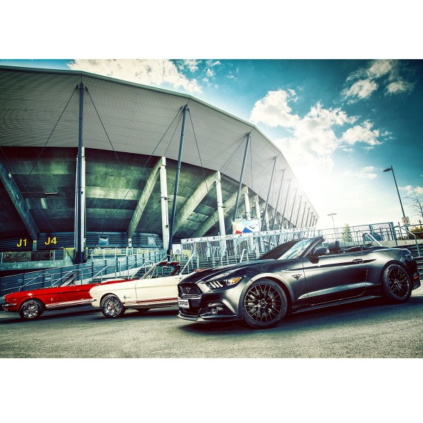 Ford Mustang Family Stadion