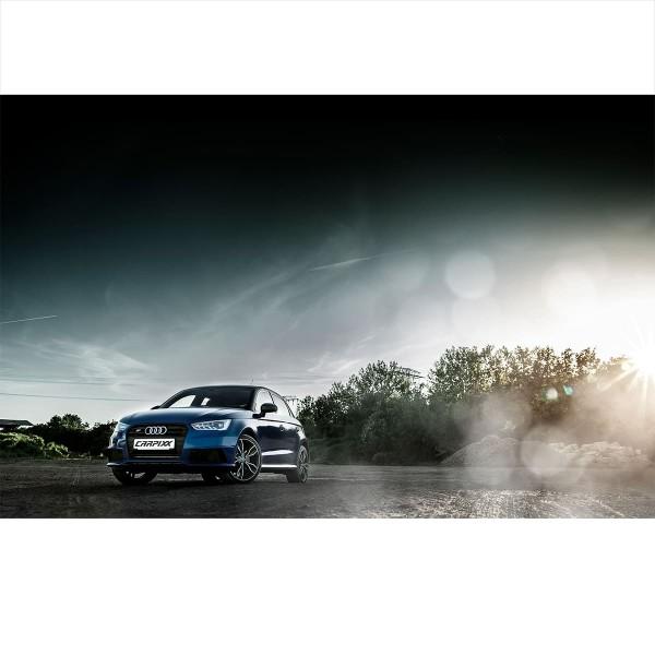 Audi S1 Landschaft